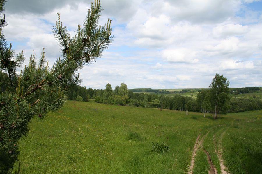 Земельный участок для садоводства